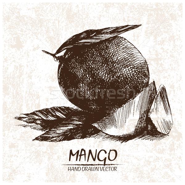 Digitale vector gedetailleerd mango retro Stockfoto © frimufilms