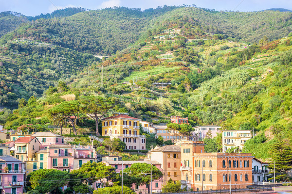 Daylight view to city buildings and green mountains of Monteross Stock photo © frimufilms