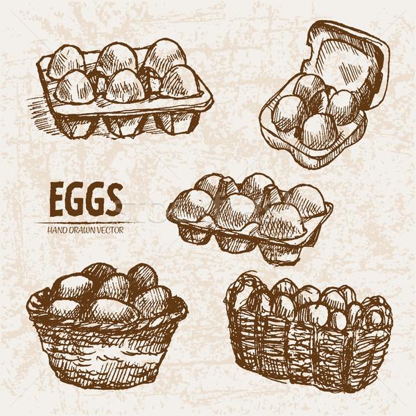 Dijital vektör ayrıntılı hat sanat yumurta Stok fotoğraf © frimufilms