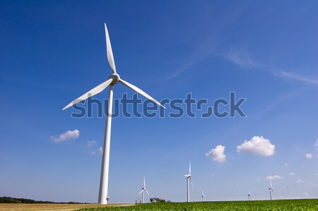 Wind farm Stock photo © froxx