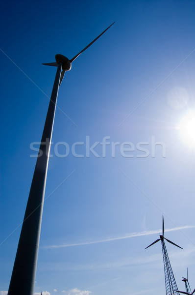 Wind farm Stock photo © froxx