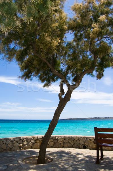 Deniz görmek mesire plaj gökyüzü manzara Stok fotoğraf © froxx