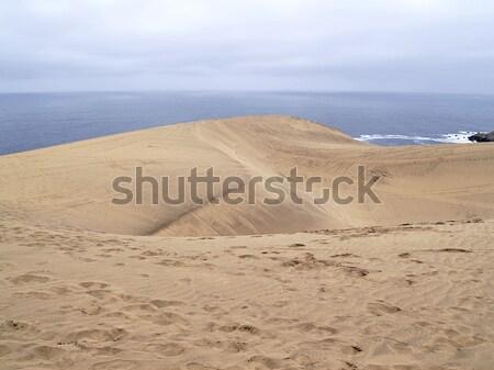 çöl manzara deniz sahil gökyüzü su Stok fotoğraf © fxegs