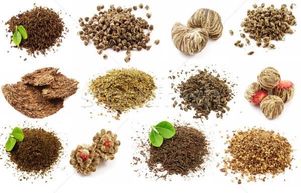 Set of tea Stock photo © fyletto