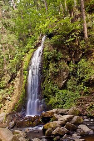 водопада лес длительной экспозиции весны пейзаж путешествия Сток-фото © fyletto