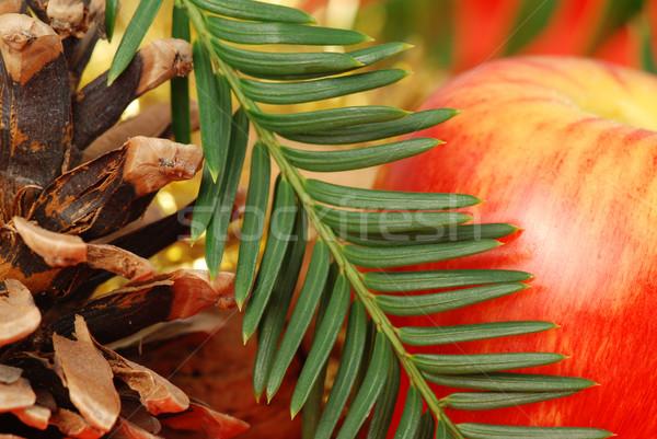 Navidad cono manzana ataviar rama mesa Foto stock © fyletto