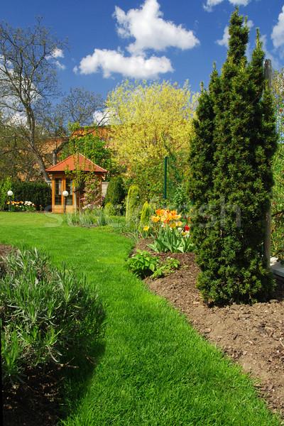 Voorjaar tuin mooie blauwe hemel gras landschap Stockfoto © fyletto