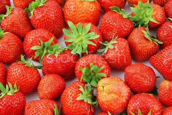 Aardbeien vers aardbei vruchten Rood groene bladeren Stockfoto © fyletto