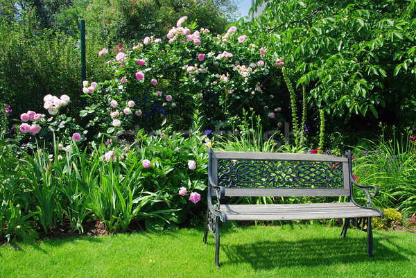Jardin banc belle paisible rose roses Photo stock © fyletto