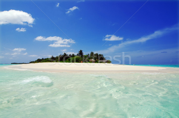 Island in the Maldives Stock photo © fyletto
