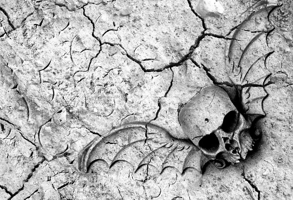 Death in soil Stock photo © fyletto