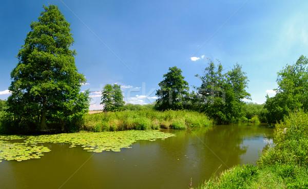 Vidéki táj vidéki nyár tájkép folyó zöld Stock fotó © fyletto