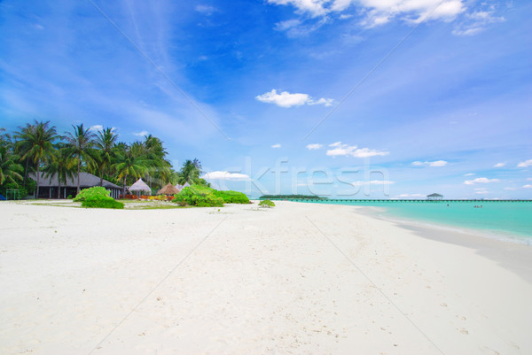 Tropicales paradis Maldives blanche plage turquoise Photo stock © fyletto