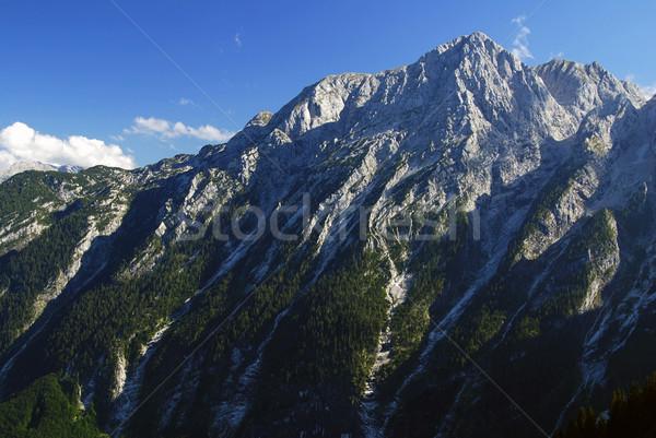 Альпы могущественный альпийский горные Австрия Сток-фото © fyletto