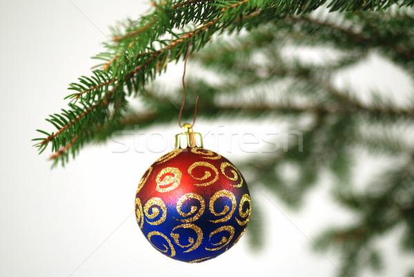 Kerstboom kleurrijk decoratie geïsoleerd witte ondiep Stockfoto © fyletto