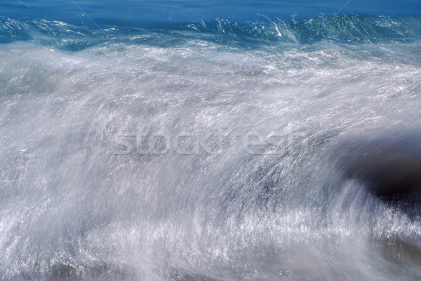 Huge wave Stock photo © fyletto