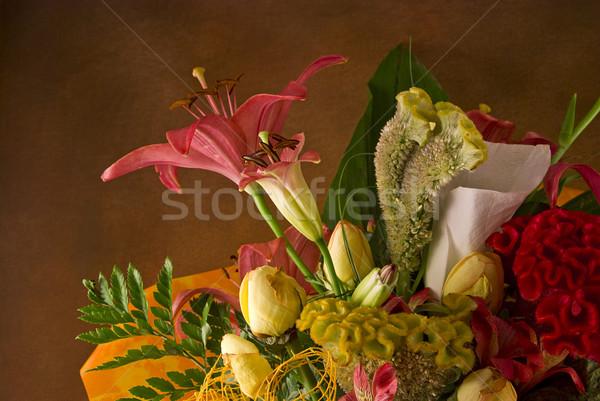 букет подробность красивой коричневый весны любви Сток-фото © fyletto