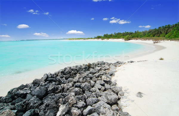 Beach in the Maldives Stock photo © fyletto