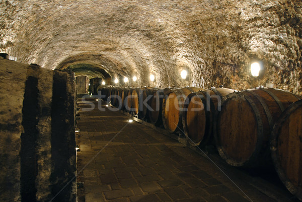 Wine cellar Stock photo © fyletto
