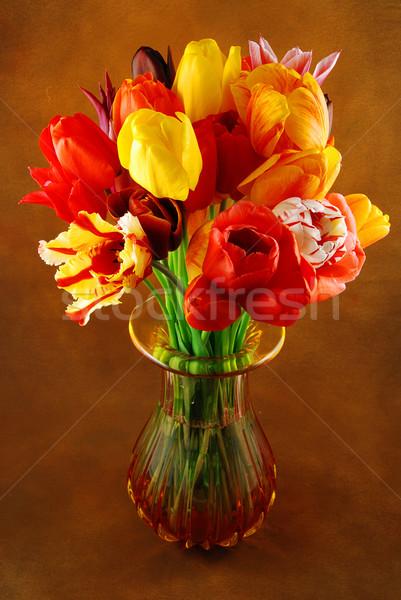 Tulipanes hermosa flores de primavera colorido jarrón Foto stock © fyletto