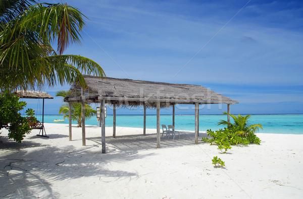 ビーチ モルディブ 美しい 熱帯ビーチ ターコイズ 海 ストックフォト © fyletto