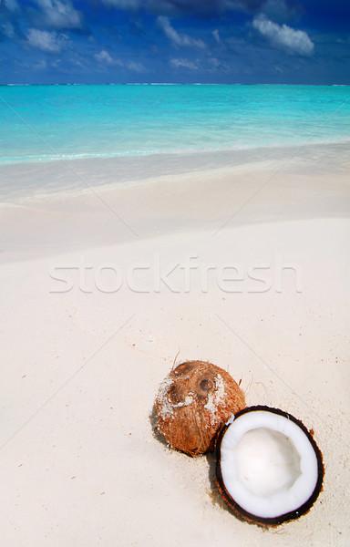Coco praia belo praia tropical Foto stock © fyletto