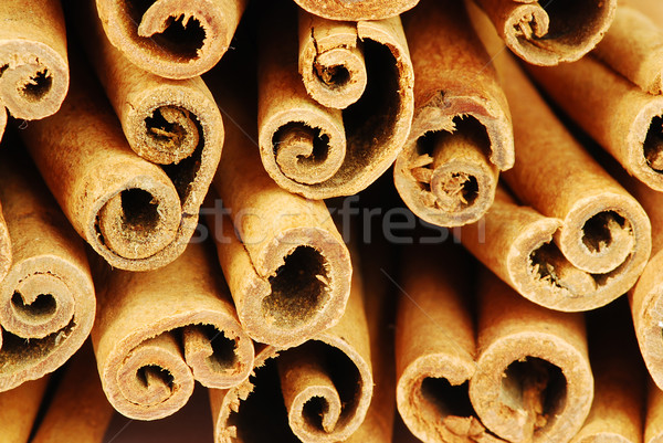 cinnamon sticks Stock photo © fyletto
