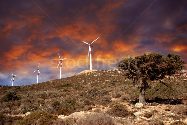 Wind turbines in movement Stock photo © fyletto