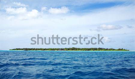 Maldivian island Stock photo © fyletto