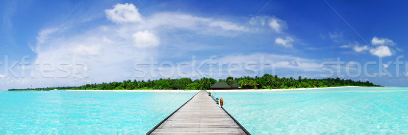 Maldives Stock photo © fyletto
