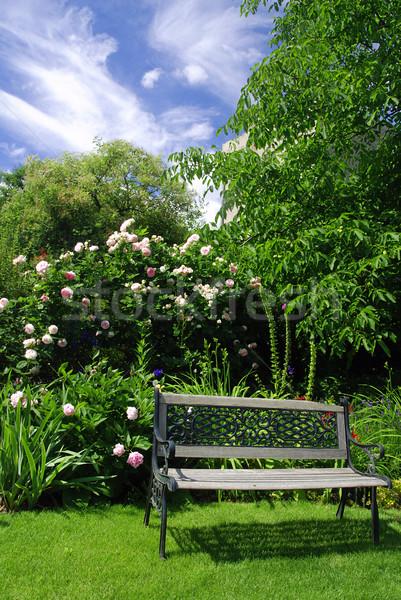 Tuin bank mooie vreedzaam roze rozen Stockfoto © fyletto