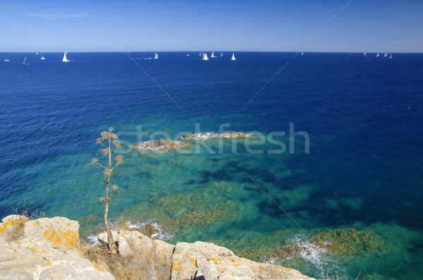 Yacht race Stock photo © fyletto