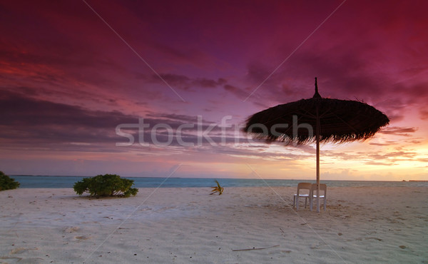 Paraguas puesta de sol dos sillas playa hermosa Foto stock © fyletto