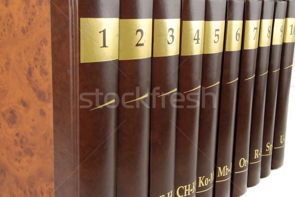 Encyklopedia zestaw 10 ciężki książki czarny Zdjęcia stock © fyletto