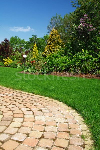 Beautiful garden and Path Stock photo © fyletto