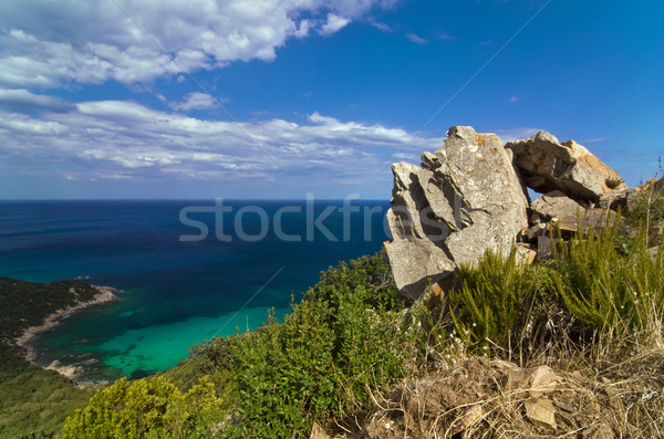 синий могущественный рок лес природы морем Сток-фото © fyletto