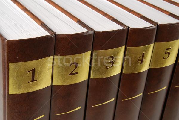 Encyclopédie cinquième livres rangée livre noir Photo stock © fyletto