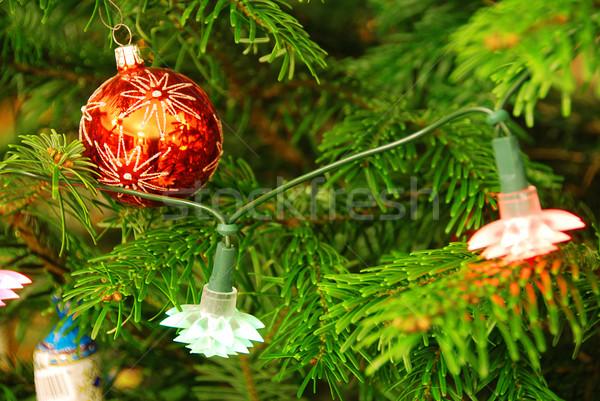 Kerstboom mooie Blauw decoratie opknoping ondiep Stockfoto © fyletto