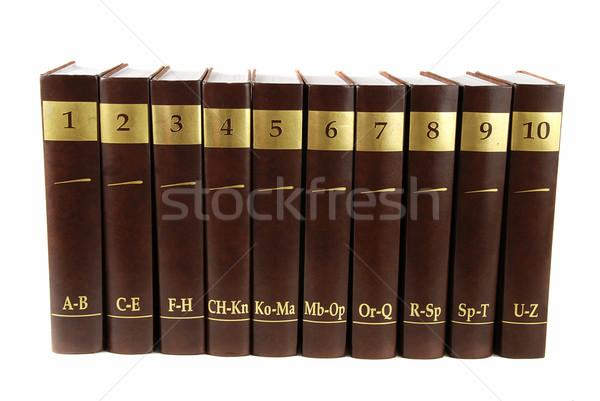 Encyclopedie ingesteld 10 zwaar boek zwarte Stockfoto © fyletto