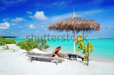Beach in Maldives Stock photo © fyletto