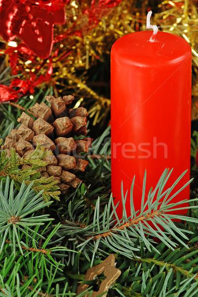 Рождества свечу натюрморт конус соснового Сток-фото © fyletto