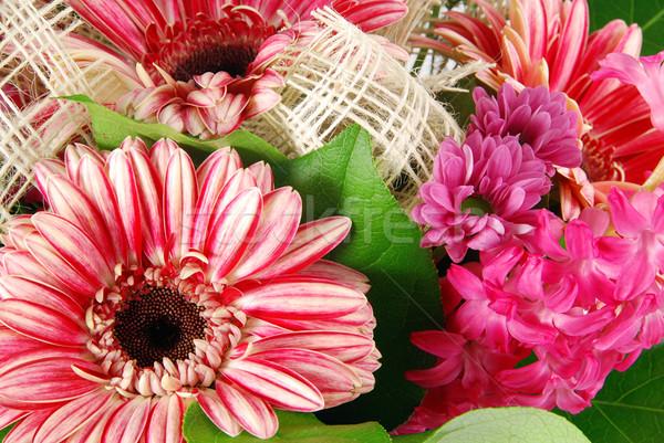 花 詳細 美しい 花束 新鮮な イースター ストックフォト © fyletto