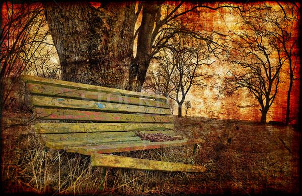 Depressive fall contrasts Stock photo © fyletto