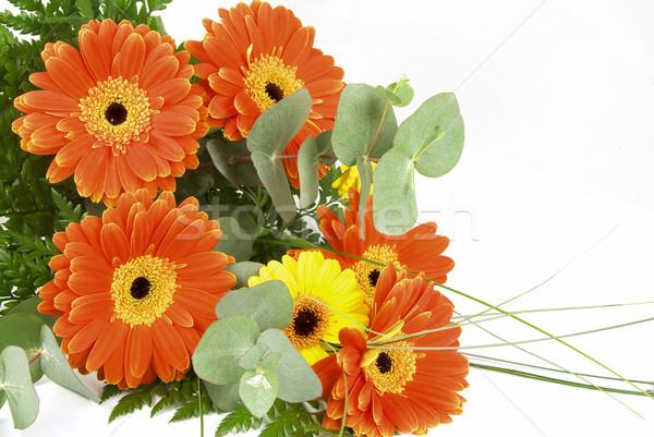Virágcsokor narancs virágok levelek izolált kert Stock fotó © fyletto