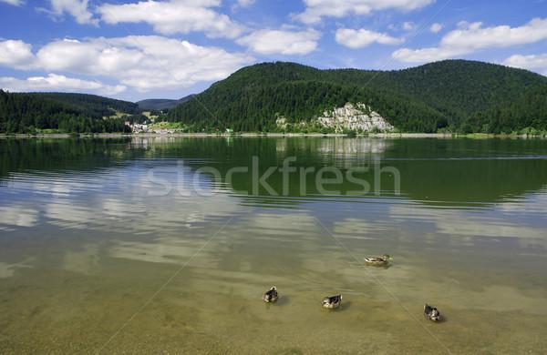 湖 山 4 フォアグラウンド 青空 空 ストックフォト © fyletto
