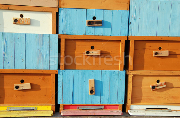 Brand new bee house Stock photo © fyletto