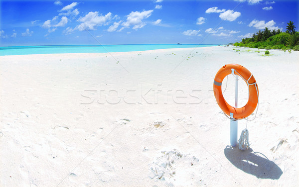 Photo stock: Plage · tropicale · panorama · panoramique · paysage · belle · orange