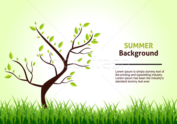 Summer Landscape. Tree on a Background of Green Grass. Vector Il Stock photo © Fyuriy