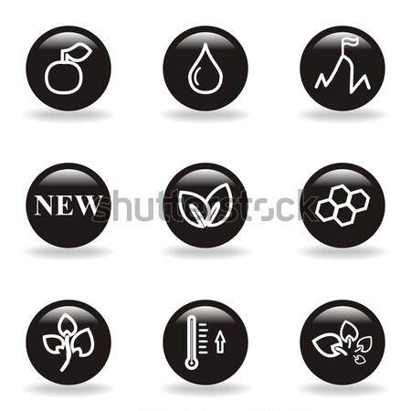 Stock photo: Glossy icon set
