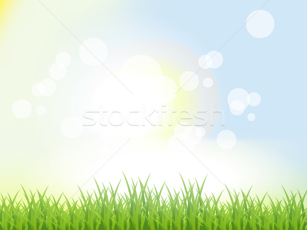 Abstract Summer Background Stock photo © Fyuriy
